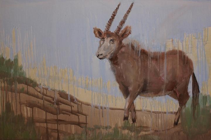 RAINY SEASON, acrylic, 2014 (73x110cm)